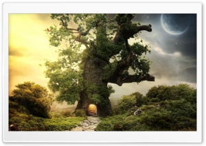 Tree House HD Wide Wallpaper for Widescreen