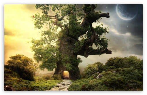 Tree House HD wallpaper for Standard 4:3 5:4 Fullscreen UXGA XGA SVGA QSXGA SXGA ; Wide 16:10 5:3 Widescreen WHXGA WQXGA WUXGA WXGA WGA ; HD 16:9 High Definition WQHD QWXGA 1080p 900p 720p QHD nHD ; Other 3:2 DVGA HVGA HQVGA devices ( Apple PowerBook G4 iPhone 4 3G 3GS iPod Touch ) ; Mobile VGA WVGA iPhone iPad PSP Phone - VGA QVGA Smartphone ( PocketPC GPS iPod Zune BlackBerry HTC Samsung LG Nokia Eten Asus ) WVGA WQVGA Smartphone ( HTC Samsung Sony Ericsson LG Vertu MIO ) HVGA Smartphone ( Apple iPhone iPod BlackBerry HTC Samsung Nokia ) Sony PSP Zune HD Zen ; Tablet 2 Android ;