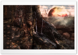 Tree Of Worlds No. 2 HD Wide Wallpaper for 4K UHD Widescreen desktop & smartphone