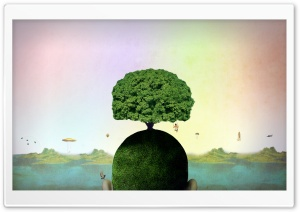 Tree On A Head HD Wide Wallpaper for Widescreen