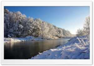 Trees Covered In Snow HD Wide Wallpaper for Widescreen
