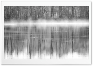 Trees Reflections In Water Black And White HD Wide Wallpaper for Widescreen