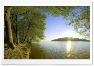 Trees Shore Lake - Sunlight HD Wide Wallpaper for 4K UHD Widescreen desktop & smartphone