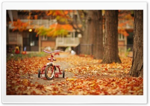 Tricycle HD Wide Wallpaper for Widescreen