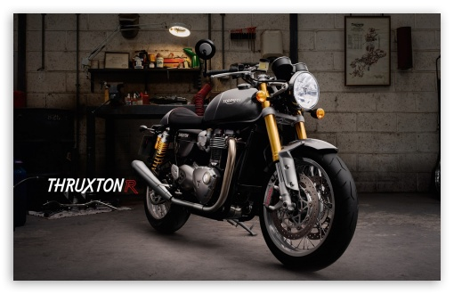 Triumph Thruxton R ❤ 4K UHD Wallpaper for Wide 16:10 5:3 Widescreen WHXGA WQXGA WUXGA WXGA WGA ; 4K UHD 16:9 Ultra High Definition 2160p 1440p 1080p 900p 720p ; Standard 4:3 5:4 3:2 Fullscreen UXGA XGA SVGA QSXGA SXGA DVGA HVGA HQVGA ( Apple PowerBook G4 iPhone 4 3G 3GS iPod Touch ) ; Tablet 1:1 ; iPad 1/2/Mini ; Mobile 4:3 5:3 3:2 16:9 5:4 - UXGA XGA SVGA WGA DVGA HVGA HQVGA ( Apple PowerBook G4 iPhone 4 3G 3GS iPod Touch ) 2160p 1440p 1080p 900p 720p QSXGA SXGA ;