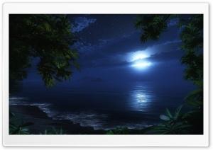 Tropic Night Ultra HD Wallpaper for 4K UHD Widescreen desktop, tablet & smartphone