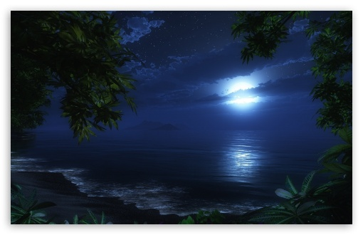 Download Tropic Night HD Wallpaper