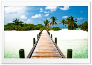 Tropical HD Wide Wallpaper for Widescreen