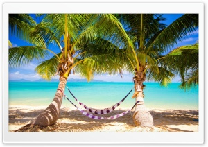 Tropical Beach Hammock HD Wide Wallpaper for 4K UHD Widescreen desktop & smartphone