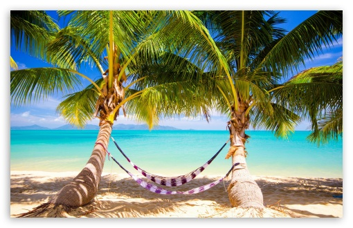 Hd Tropical Island Beach Paradise Wallpapers And Backgrounds: Tropical Beach Hammock 4K HD Desktop Wallpaper For 4K