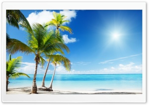 Tropical Beach Paradise HD Wide Wallpaper for Widescreen