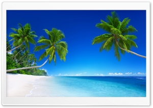 Tropical Beach Paradise 5K Ultra HD Wallpaper for 4K UHD Widescreen desktop, tablet & smartphone