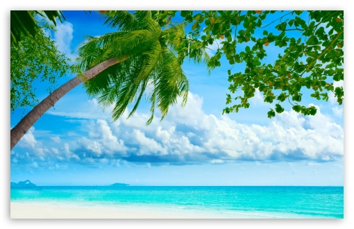 Tropical Beach Resorts HD wallpaper for Standard 4:3 5:4 Fullscreen UXGA XGA SVGA QSXGA SXGA ; Wide 16:10 5:3 Widescreen WHXGA WQXGA WUXGA WXGA WGA ; HD 16:9 High Definition WQHD QWXGA 1080p 900p 720p QHD nHD ; Other 3:2 DVGA HVGA HQVGA devices ( Apple PowerBook G4 iPhone 4 3G 3GS iPod Touch ) ; Mobile VGA WVGA iPhone iPad PSP Phone - VGA QVGA Smartphone ( PocketPC GPS iPod Zune BlackBerry HTC Samsung LG Nokia Eten Asus ) WVGA WQVGA Smartphone ( HTC Samsung Sony Ericsson LG Vertu MIO ) HVGA Smartphone ( Apple iPhone iPod BlackBerry HTC Samsung Nokia ) Sony PSP Zune HD Zen ; Tablet 2 ;