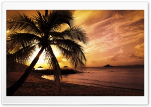 Tropical Beach Sunset HD Wide Wallpaper for 4K UHD Widescreen desktop & smartphone