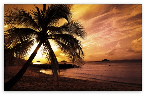 Tropical Beach Sunset UltraHD Wallpaper for Wide 16:10 5:3 Widescreen WHXGA WQXGA WUXGA WXGA WGA ; 8K UHD TV 16:9 Ultra High Definition 2160p 1440p 1080p 900p 720p ; Standard 4:3 5:4 3:2 Fullscreen UXGA XGA SVGA QSXGA SXGA DVGA HVGA HQVGA ( Apple PowerBook G4 iPhone 4 3G 3GS iPod Touch ) ; Tablet 1:1 ; iPad 1/2/Mini ; Mobile 4:3 5:3 3:2 16:9 5:4 - UXGA XGA SVGA WGA DVGA HVGA HQVGA ( Apple PowerBook G4 iPhone 4 3G 3GS iPod Touch ) 2160p 1440p 1080p 900p 720p QSXGA SXGA ;