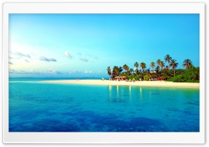 Tropical Beach With Palm Trees HD Wide Wallpaper for 4K UHD Widescreen desktop & smartphone