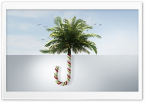 Tropical Christmas Ultra HD Wallpaper for 4K UHD Widescreen desktop, tablet & smartphone