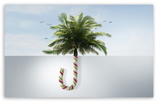Download Tropical Christmas HD Wallpaper