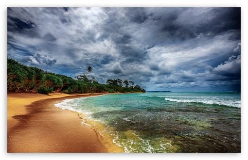 Tropical Coast With Beautiful Beach ❤ 4K UHD Wallpaper for Wide 16:10 5:3 Widescreen WHXGA WQXGA WUXGA WXGA WGA ; 4K UHD 16:9 Ultra High Definition 2160p 1440p 1080p 900p 720p ; Standard 4:3 5:4 3:2 Fullscreen UXGA XGA SVGA QSXGA SXGA DVGA HVGA HQVGA ( Apple PowerBook G4 iPhone 4 3G 3GS iPod Touch ) ; Tablet 1:1 ; iPad 1/2/Mini ; Mobile 4:3 5:3 3:2 16:9 5:4 - UXGA XGA SVGA WGA DVGA HVGA HQVGA ( Apple PowerBook G4 iPhone 4 3G 3GS iPod Touch ) 2160p 1440p 1080p 900p 720p QSXGA SXGA ;