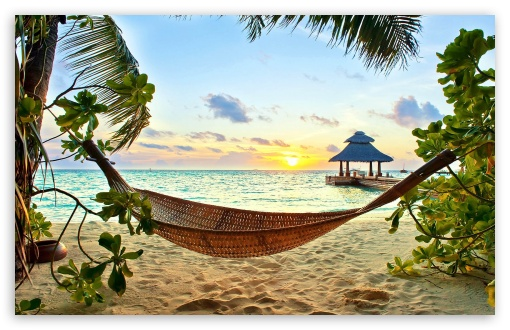 Attractive Download TROPICAL PARADISE HD Wallpaper