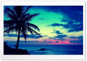 Tropical Sunrise HD Wide Wallpaper for Widescreen