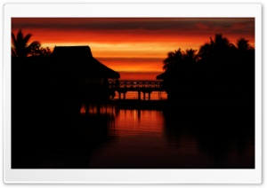Tropical Sunset Silhouettes HD Wide Wallpaper for Widescreen