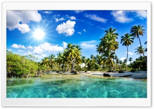 Tropics Palm Trees Sun Beach HD Wide Wallpaper for 4K UHD Widescreen desktop & smartphone