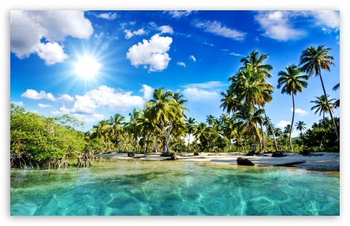Tropics Palm Trees Sun Beach ❤ 4K UHD Wallpaper for Wide 16:10 5:3 Widescreen WHXGA WQXGA WUXGA WXGA WGA ; 4K UHD 16:9 Ultra High Definition 2160p 1440p 1080p 900p 720p ; Standard 4:3 5:4 3:2 Fullscreen UXGA XGA SVGA QSXGA SXGA DVGA HVGA HQVGA ( Apple PowerBook G4 iPhone 4 3G 3GS iPod Touch ) ; Smartphone 5:3 WGA ; Tablet 1:1 ; iPad 1/2/Mini ; Mobile 4:3 5:3 3:2 16:9 5:4 - UXGA XGA SVGA WGA DVGA HVGA HQVGA ( Apple PowerBook G4 iPhone 4 3G 3GS iPod Touch ) 2160p 1440p 1080p 900p 720p QSXGA SXGA ;