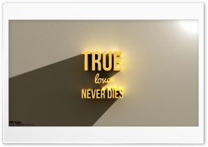 True Love Never Dies_05_Nithinsuren HD Wide Wallpaper for 4K UHD Widescreen desktop & smartphone