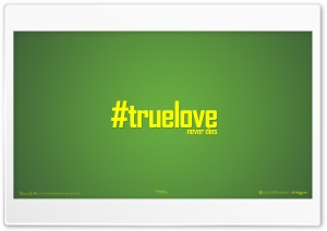 True LOVE_nithinsuren HD Wide Wallpaper for Widescreen