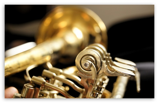 Trumpet ❤ 4K UHD Wallpaper for Wide 16:10 5:3 Widescreen WHXGA WQXGA WUXGA WXGA WGA ; 4K UHD 16:9 Ultra High Definition 2160p 1440p 1080p 900p 720p ; UHD 16:9 2160p 1440p 1080p 900p 720p ; Standard 4:3 5:4 3:2 Fullscreen UXGA XGA SVGA QSXGA SXGA DVGA HVGA HQVGA ( Apple PowerBook G4 iPhone 4 3G 3GS iPod Touch ) ; iPad 1/2/Mini ; Mobile 4:3 5:3 3:2 16:9 5:4 - UXGA XGA SVGA WGA DVGA HVGA HQVGA ( Apple PowerBook G4 iPhone 4 3G 3GS iPod Touch ) 2160p 1440p 1080p 900p 720p QSXGA SXGA ;