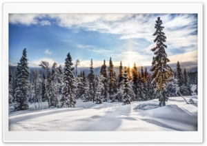 Trysil Norway HD Wide Wallpaper for Widescreen