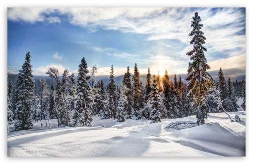 Trysil Norway ❤ 4K UHD Wallpaper for Wide 16:10 5:3 Widescreen WHXGA WQXGA WUXGA WXGA WGA ; 4K UHD 16:9 Ultra High Definition 2160p 1440p 1080p 900p 720p ; Standard 4:3 5:4 3:2 Fullscreen UXGA XGA SVGA QSXGA SXGA DVGA HVGA HQVGA ( Apple PowerBook G4 iPhone 4 3G 3GS iPod Touch ) ; Smartphone 5:3 WGA ; Tablet 1:1 ; iPad 1/2/Mini ; Mobile 4:3 5:3 3:2 16:9 5:4 - UXGA XGA SVGA WGA DVGA HVGA HQVGA ( Apple PowerBook G4 iPhone 4 3G 3GS iPod Touch ) 2160p 1440p 1080p 900p 720p QSXGA SXGA ; Dual 16:10 5:3 16:9 4:3 5:4 WHXGA WQXGA WUXGA WXGA WGA 2160p 1440p 1080p 900p 720p UXGA XGA SVGA QSXGA SXGA ;