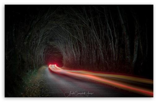 Tunnel of Trees, Night, Car Light Trails UltraHD Wallpaper for Wide 16:10 5:3 Widescreen WHXGA WQXGA WUXGA WXGA WGA ; UltraWide 21:9 24:10 ; 8K UHD TV 16:9 Ultra High Definition 2160p 1440p 1080p 900p 720p ; UHD 16:9 2160p 1440p 1080p 900p 720p ; Standard 4:3 5:4 3:2 Fullscreen UXGA XGA SVGA QSXGA SXGA DVGA HVGA HQVGA ( Apple PowerBook G4 iPhone 4 3G 3GS iPod Touch ) ; Smartphone 3:2 DVGA HVGA HQVGA ( Apple PowerBook G4 iPhone 4 3G 3GS iPod Touch ) ; Tablet 1:1 ; iPad 1/2/Mini ; Mobile 4:3 5:3 3:2 16:9 5:4 - UXGA XGA SVGA WGA DVGA HVGA HQVGA ( Apple PowerBook G4 iPhone 4 3G 3GS iPod Touch ) 2160p 1440p 1080p 900p 720p QSXGA SXGA ;