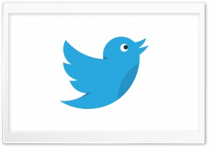 Twitter Bird Social Media HD Wide Wallpaper for Widescreen
