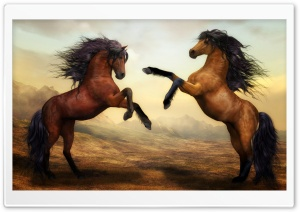 Two Beautiful Horses Fighting HD Wide Wallpaper for 4K UHD Widescreen desktop & smartphone