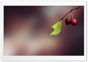 Two Cherries HD Wide Wallpaper for Widescreen
