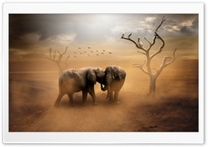 Two Elephants, Wild Animals, Dust Ultra HD Wallpaper for 4K UHD Widescreen desktop, tablet & smartphone