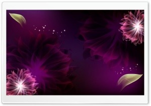 Two Purple Flowers HD Wide Wallpaper for Widescreen