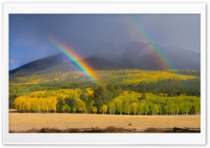 Two Rainbow HD Wide Wallpaper for Widescreen