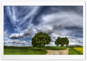Two Roads HDR HD Wide Wallpaper for Widescreen