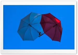 Two Umbrellas HD Wide Wallpaper for Widescreen