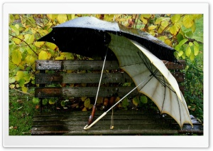 Umbrellas On The Bench HD Wide Wallpaper for Widescreen