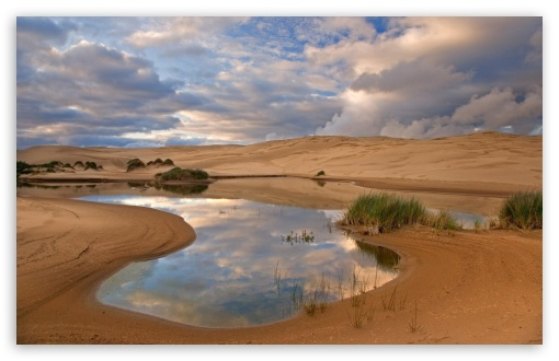 Umpqua Dunes Siuslaw National Forest Oregon HD wallpaper for Wide 16:10 5:3 Widescreen WHXGA WQXGA WUXGA WXGA WGA ; HD 16:9 High Definition WQHD QWXGA 1080p 900p 720p QHD nHD ; Standard 4:3 5:4 3:2 Fullscreen UXGA XGA SVGA QSXGA SXGA DVGA HVGA HQVGA devices ( Apple PowerBook G4 iPhone 4 3G 3GS iPod Touch ) ; Tablet 1:1 ; iPad 1/2/Mini ; Mobile 4:3 5:3 3:2 16:9 5:4 - UXGA XGA SVGA WGA DVGA HVGA HQVGA devices ( Apple PowerBook G4 iPhone 4 3G 3GS iPod Touch ) WQHD QWXGA 1080p 900p 720p QHD nHD QSXGA SXGA ;