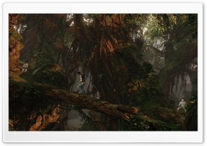 Uncharted 2 Among Thieves HD Wide Wallpaper for Widescreen