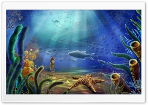 Under Water HD Wide Wallpaper for Widescreen