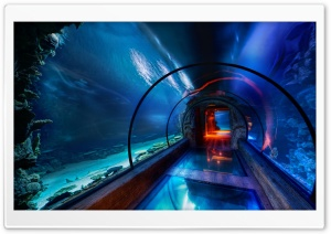 Underwater Passage, Las Vegas HD Wide Wallpaper for 4K UHD Widescreen desktop & smartphone