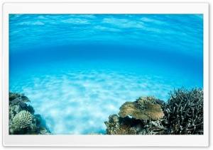 Underwater, Summer HD Wide Wallpaper for Widescreen