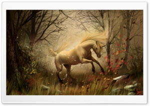 Unicorn HD Wide Wallpaper for Widescreen