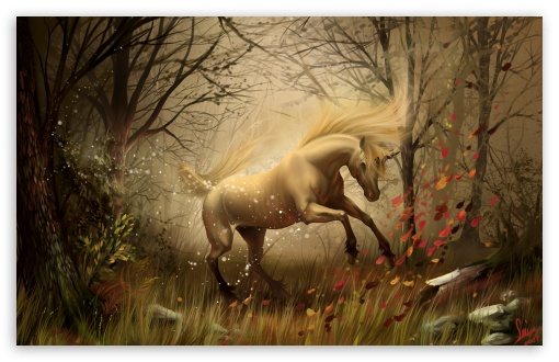 Unicorn HD wallpaper for Wide 16:10 5:3 Widescreen WHXGA WQXGA WUXGA WXGA WGA ; HD 16:9 High Definition WQHD QWXGA 1080p 900p 720p QHD nHD ; Standard 4:3 5:4 3:2 Fullscreen UXGA XGA SVGA QSXGA SXGA DVGA HVGA HQVGA devices ( Apple PowerBook G4 iPhone 4 3G 3GS iPod Touch ) ; Tablet 1:1 ; iPad 1/2/Mini ; Mobile 4:3 5:3 3:2 16:9 5:4 - UXGA XGA SVGA WGA DVGA HVGA HQVGA devices ( Apple PowerBook G4 iPhone 4 3G 3GS iPod Touch ) WQHD QWXGA 1080p 900p 720p QHD nHD QSXGA SXGA ;